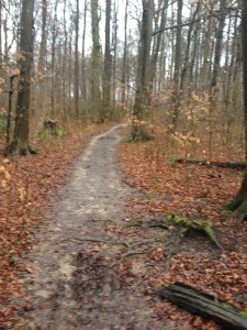 Matschiger Trail