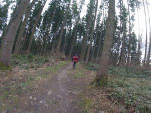 In kleiner Gruppe auf einsamen Trails